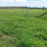 2062.676 hectares (5097 Acres) South Burnett Quality Irrigation & Grazing