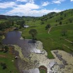 247 Acres of absolutely top class pastured red country – held for 52 years by current owners .