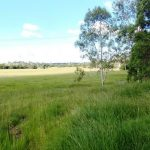 75 Acres , the best of the best , 10 Minutes Gympie – $495,000
