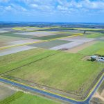 Macadamias (basically any type of Tree Cropping ) ,Small Crops , 314 Acres – Bundaberg .