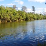 118.3 Acres – '16' Freehold Titles – Mary River Frontage – Extensive Sand & Gravel Reserves