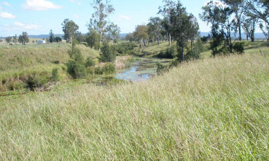 Wide bay highway creek pic 3
