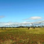 Irrigation , Cropping , Cattle – 188 Acres – Great Country .