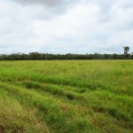 904 Acres – direct access Great Sandy Straits & Fraser Island