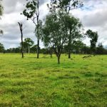 100 Acres , 200 metres to boat ramp to Fraser Island – incredibly rare !!