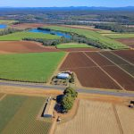 321 Acre Magnificent Red Soil Bundaberg Farm – Nut Grass Free !!!