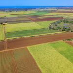 Bundaberg Blue Ribbon Property 111 Acres – Absolutely Superb