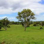 Auction – 300 Acres – absolutely magnificent grazing + approved quarry $$